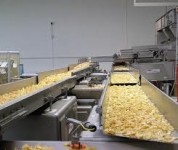 Oferty pracy w Holandii od zaraz przy pakowaniu na produkcji – Breda