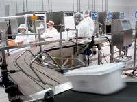 Praca Holandia na produkcji soków bez znajomości języka doświadczenia Horst