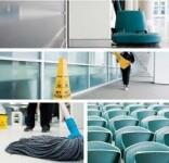 Belgia praca od zaraz dla kobiet w drukarni i przy sprzątaniu