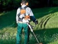 Holandia praca fizyczna bez znajomości języka holenderskiego przy koszeniu traw