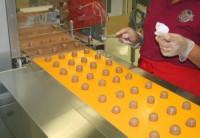 Praca w Belgii przy linii produkcyjnej czekoladek bez znajomości języka lokalnego