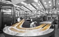 Praca w Holandii na linii produkcyjnej przy pakowaniu kanapek Breda
