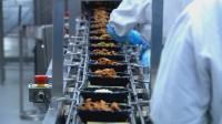 Niemcy praca na produkcji spożywczej bez znajomości języka w Kolonii