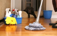 Praca Anglia dla kobiet oferta przy sprzątaniu w Londynie od zaraz