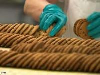 Produkcja ciastek w Harderwijk praca Holandia bez znajomości języka holenderskiego