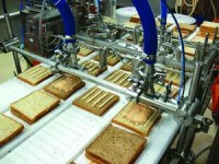 Dam pracę w Anglii na linii produkcyjnej kanapek w Londynie bez doświadczenia