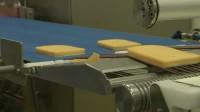 Oferta fizycznej pracy w Holandii przy produkcji serów bez języka Zeewolde